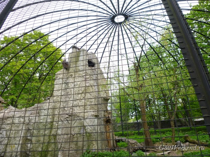 Kiev_Zoo_38.jpg