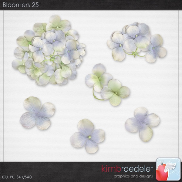 kb-bloomers26