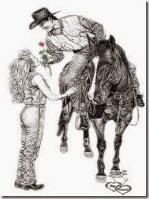 1domar caballo cowboys (15)