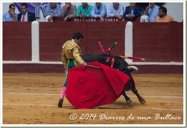 Toros 2014 (2)-14