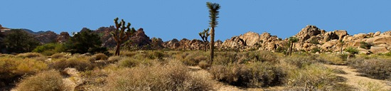 Joshua Tree NP Hidden Valley Trail Panoramic Merge
