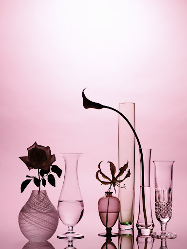 The form of a bud vase should be as striking as the beauty of the bloom it holds. (Martha Stewart Living)