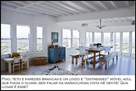 blue-animal-fur-white-interior