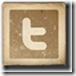 twitter-300-n5333233232