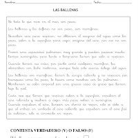 LAS BALLENAS-1