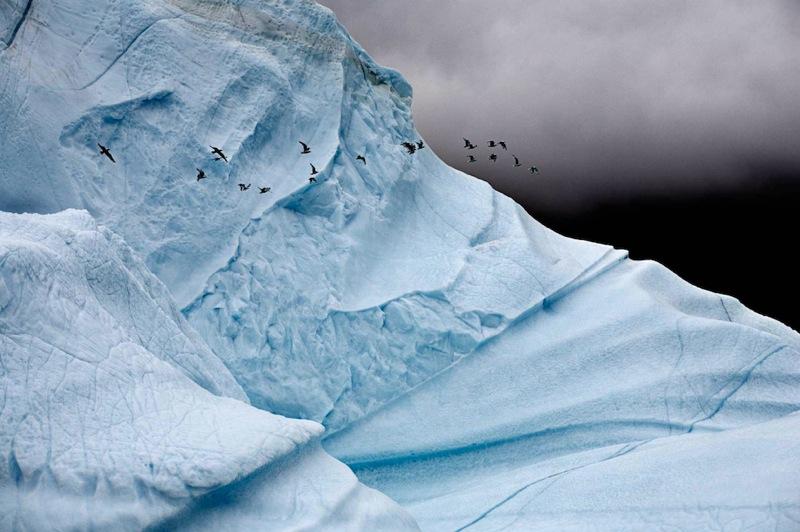 Camille Seaman Iceberg005 copy