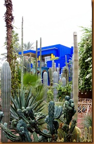 Marrakech Majorelle garden_edited-1