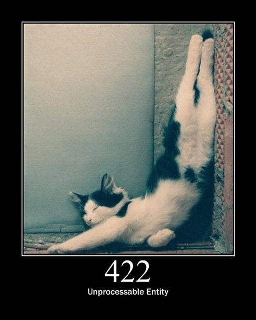 HTTP-Status-Cats-17