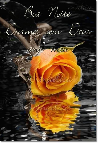 Boa noite Durma com Deus anjo meu mensagem com ros