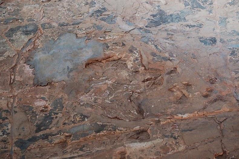 lark-quarry-dinosaur-trackways-6