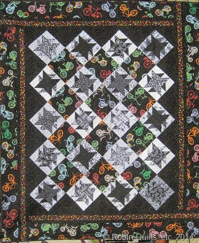 Mystery Quilt 2010