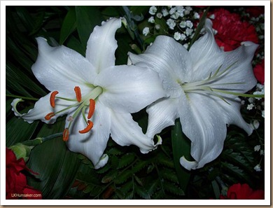 2012July-WeddingLilies