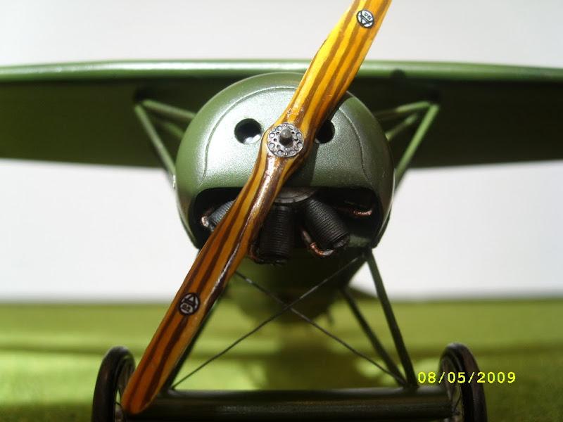 SL274460.JPG
