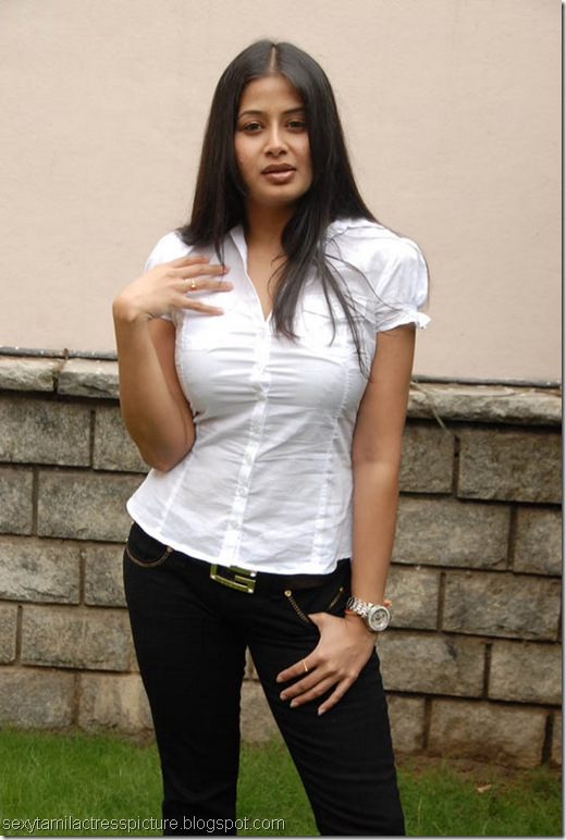 sexy-sangeetha-hot-in-tight-shirt-images