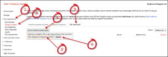 Google Web Yöneticisi Merkezi URL Kaldırma