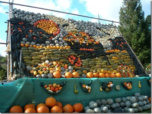 pumpkins 003