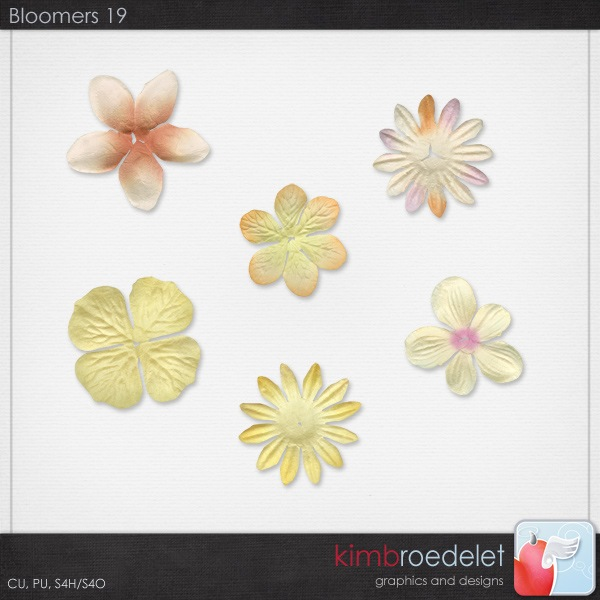 kb-bloomers19