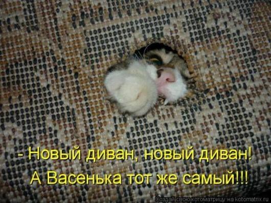 9eda01d1438834ecf273e27fcc9_prev