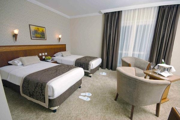 فندق ليون