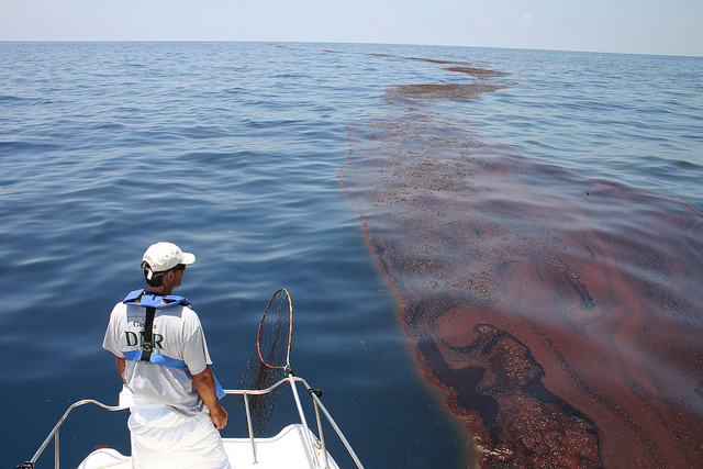 Mark Dodd, wildlife biologist from Georgia's Department of Natural Resources, surveying oiled sargassum in the Gulf of Mexico. As the nation's leading scientific resource for oil spills, NOAA has been on the scene of the BP spill from the start, providing coordinated scientific weather and biological response services to federal, state, and local organizations. Photo: Georgia Department of Natural Resources / flickr