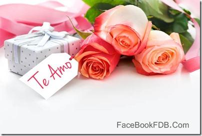 postales flores (7)