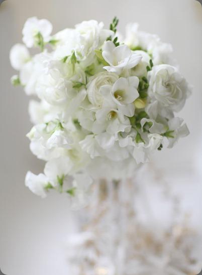 6a0120a5914b9b970c014e8660a564970d florali