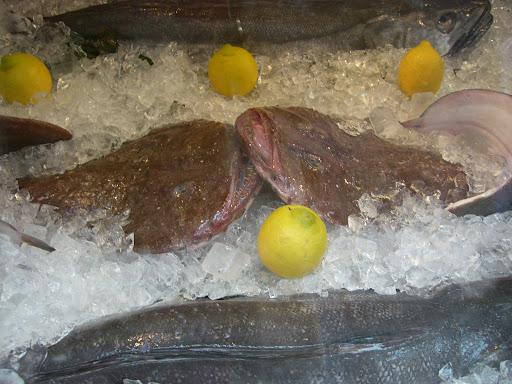 Monk fish?