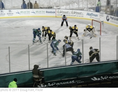 'Connecticut Whale vs. Providence Bruins - February 19, 2011' photo (c) 2011, Doug Kerr - license: http://creativecommons.org/licenses/by-sa/2.0/