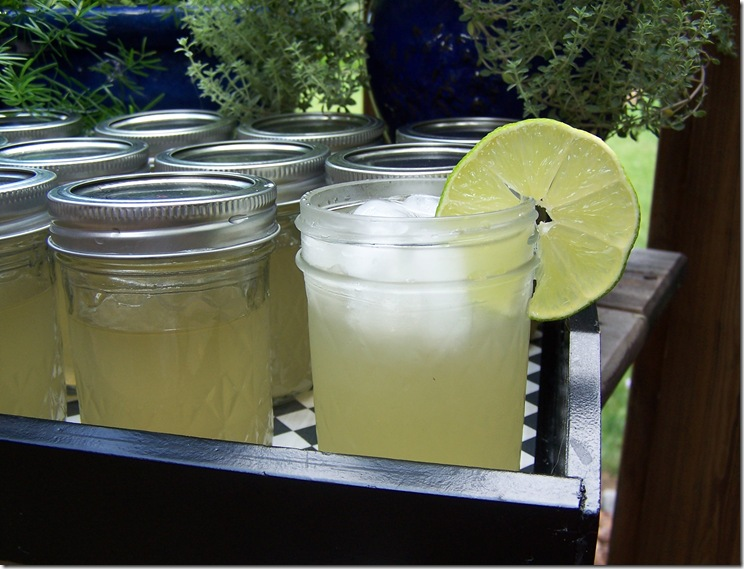 Margarita&#39;s in Jelly Jars 006