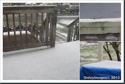 0318 snow pics