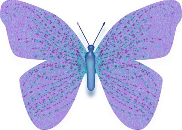 butterfly 2 WEB