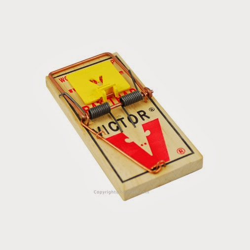382_556_victor-holdfast-mouse-trap-m325-12traps-victor-mouse-trap