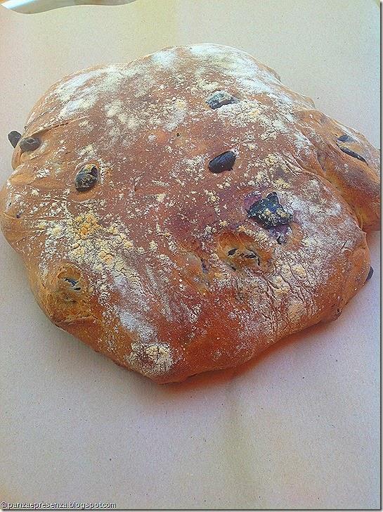 Panza presenza il pane alle olive cotto su pietra refrattaria - Pietra refrattaria da forno ...