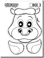 vaca - buey