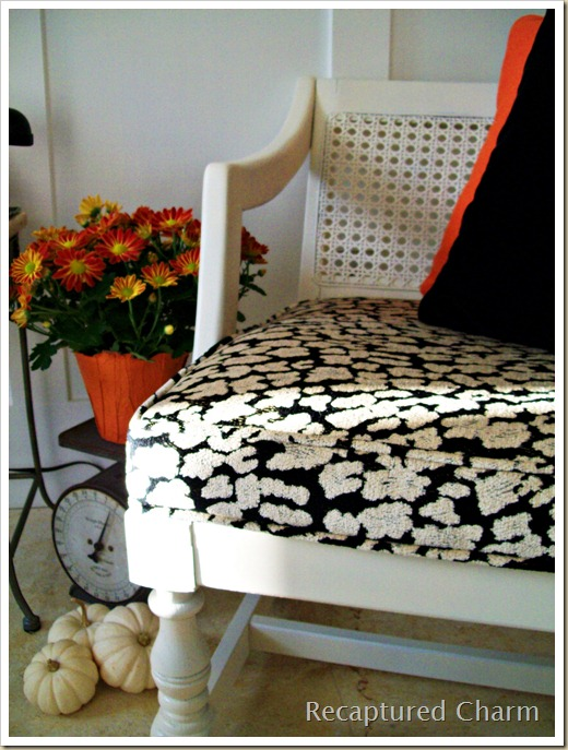 Square Cane Back chairs 023a