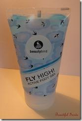 Fly High 1