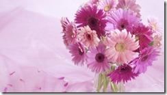 flowers wallpaper pics 1024X768