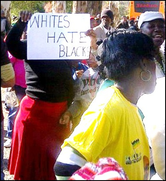 ANC HATE SPEECH WHITES HATE BLACKS ZUMA PENIS GOODMAN GALLERY MARCH MAY 28 2012
