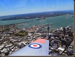 Harvard Flight - Auckland City