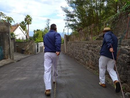06. Cu sania prin Madeira.JPG