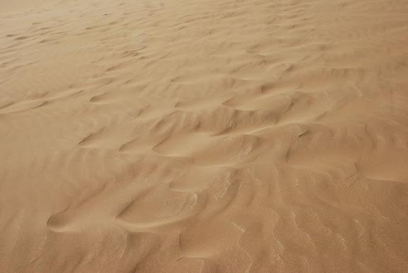 Dunes - traces