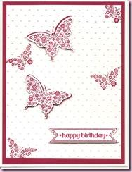 Papillon Potpouri