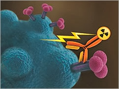 ht_131204_hiv_lymphocyte_radioimmunotherapy_250x188