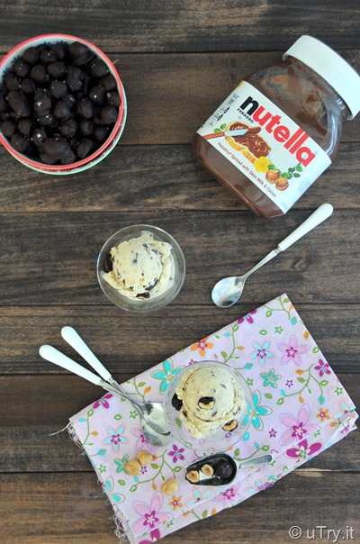 Nutella Swirl Ice Cream With Dark Chocolate Covered Hazelnuts