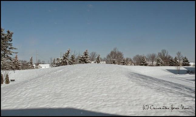 Snow, Winter Wonderland (37)