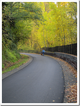 East Lake Sammamish Trail improvements