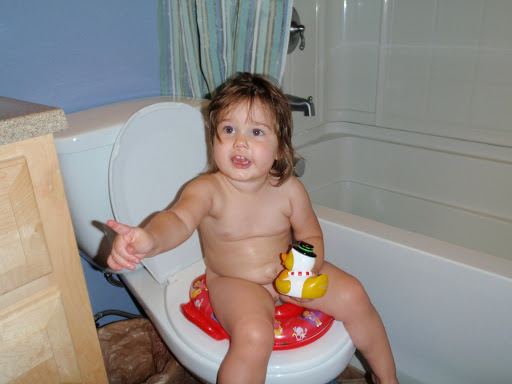 Toilet Training Potty Training Seat For Girls