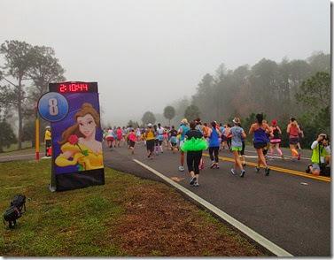 Princess Half Marathon 30