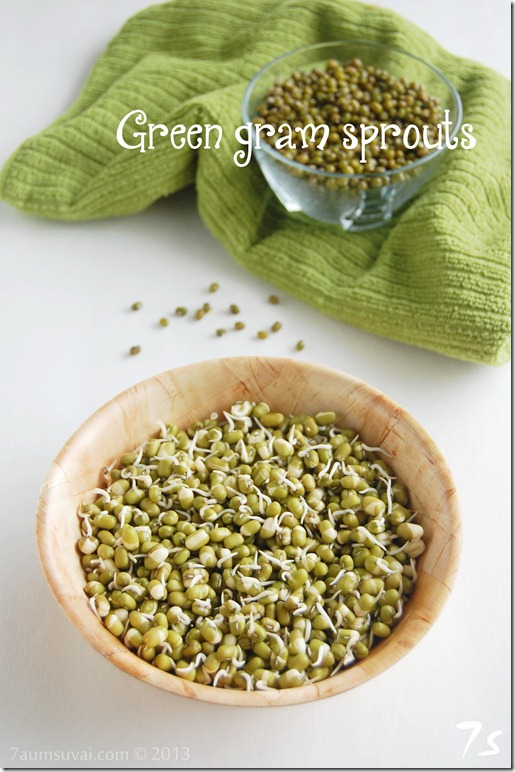 Homemade green gram sprouts