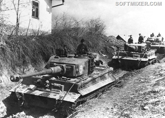 Tiger_506_Ukraine